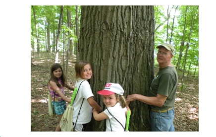 Forester Don Brown asks how many campers to hug a tree?
