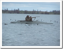 Thousand Islands Waterfowl Specialists